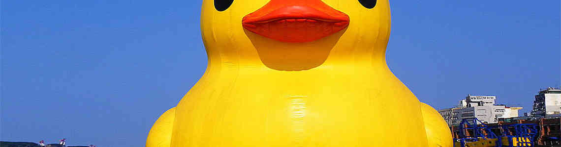 Rubber Ducks That Sailed the World's Oceans